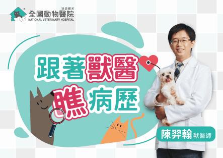 貓咪肥厚性心肌病│跟著獸醫師瞧病歷